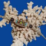 Spotted Glass Hemp Bracelet